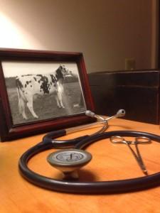 paulhamus vet services